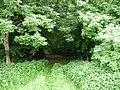 Landschaftsschutzgebiet Pferdebruch Eickholt Melle -Waldanfang- Datei 1.jpg
