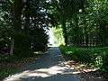 Landschaftsschutzgebiet Waldgebiet bei Neuenkirchen Melle, am Waldende - Datei 2.jpg