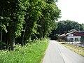 Landschaftsschutzgebiet Waldgebiet bei Neuenkirchen Melle, in Straßenmitte - Datei 3.jpg