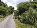 Lane at North Graddon - geograph.org.uk - 489219.jpg