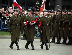 National Independence Day (Poland) - Military ceremony performed on Piłsudski Square, before the Tomb of the Unknown Soldier