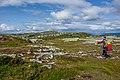 Lifjell, Telemark 2019 01.jpg