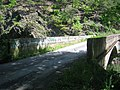 Little Cacapon River Neals Run WV 2005 05 26 04.jpg