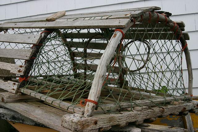 File lobster wikimedia commons for Zimmerdekoration