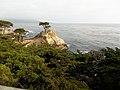 Lone Cypress - panoramio (1).jpg
