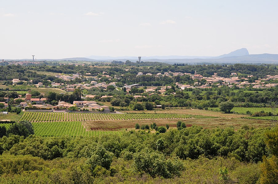 Looking North West at Pic Saint Loup 653 m. looking over Saint Series