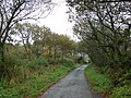 Looking towards the Holsworthy road near Derriton - geograph.org.uk - 597916.jpg