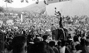 Aizkolaritza - Luxio chopping a trunk with a 2.10m diameter in 1949