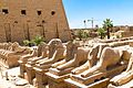 Luxor, Luxor City, Luxor, Luxor Governorate, Egypt - panoramio (130).jpg