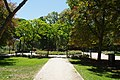 MADRID PARQUE de MADRID PRADERAS y ARBOLEDAS VIEW Ð 6K - panoramio.jpg