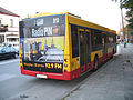 MAZ 203-076 in Kielce - rear.jpg