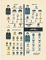 MILITARY UNIFORMS Insignia Organization 1959-1962 US Armed Forces Information DA Pam 355-120 058 UNITED STATES WOMEN IN THE ARMED FORCES Archive.org No known copyright.jpg