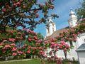 Manastirea Partoș 2.jpg