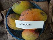 Mango Mulgoba Asit fs8.jpg