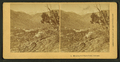 Manitou and Pikes Peak, Colorado, by Kilburn Brothers.png