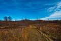 Maplewood State Park Hiking Club Trail (37745673446).jpg