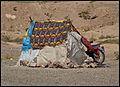 Marruecos - Morocco 2008 (2807176945).jpg