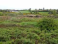 Marshy land near Comadrung - geograph.org.uk - 1302686.jpg