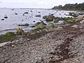 Merivälja - panoramio - Aulo Aasmaa (6).jpg