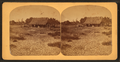 Mexican hut near the Pinto River, Texas, from Robert N. Dennis collection of stereoscopic views.png