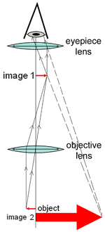 Optical microscope wikipedia diagram of a compound microscope ccuart Image collections