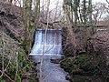 Millbank Mill ruins, Lochwinnoch - mill dam.jpg