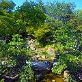 Morikami Museum View of Grounds (Waterfall).jpg