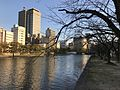 Motoyasugawa River from Hiroshima Peace Memorial Park.jpg