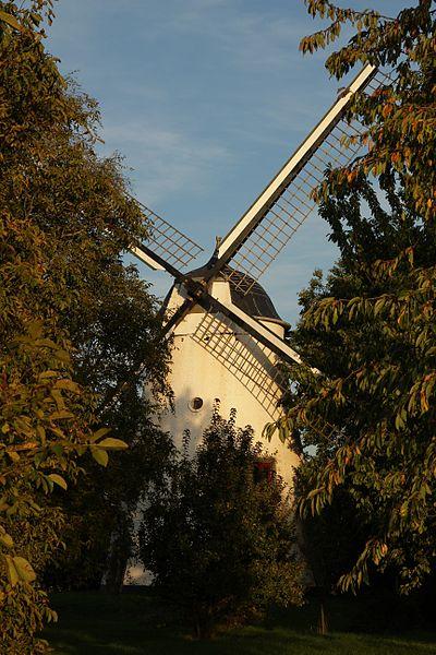 Moulin à vent en briques du Tiège (vu de face).