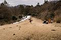 Mt.Sengen (Hakone) 06.jpg