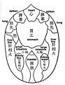 Mubun-Abdominal-Diagnosis.jpg