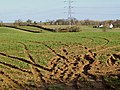Muddy Field - geograph.org.uk - 1195424.jpg