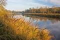 Mulde im Herbst k2.jpg