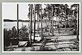 Mustanniemen leirintäalue, Silvonniemi, Äijönlahti, Punkaharju, Albin Aaltonen 1950s PK0358.jpg
