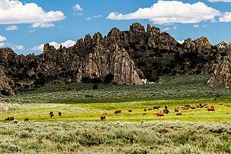 Pine Forest Range - Image: My Public Lands Roadtrip Pine Forest Range Wilderness Area in Nevada (18874964604)