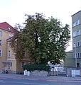 ND Bürgerreuther 1 DSC01782.jpg