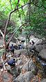 Nagalapuram Hills Trek.JPG