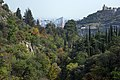 National Botanical Garden of Georgia باغ های بوتانیکال در شهر تفلیس گرجستان 11.jpg