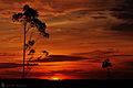 Natureza Brasil 7.jpg