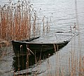 Neglected wooden boat - panoramio.jpg