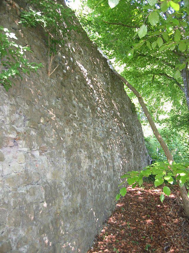 Nellenburg Wikiwand