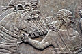Nimrud Palace Reliefs 2.jpg