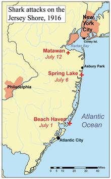 Ataki Rekinów Z New Jersey Wikipedia Wolna Encyklopedia - Mapa new jersey