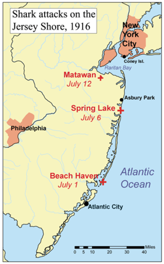 Jersey Shore shark attacks of 1916 - Map of the Jersey Shore attacks