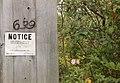 Notice.FINY.4September1992 (24815668155).jpg