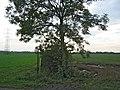 Notts-Leics County Boundary near Plungar - geograph.org.uk - 64029.jpg