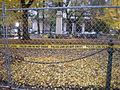 Occupy Portland November 14, Lownsdale Square.jpg