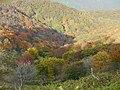 Ojigahata, Taga, Inukami District, Shiga Prefecture 522-0321, Japan - panoramio (2).jpg