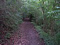 Old Road to Eastnor - geograph.org.uk - 32109.jpg