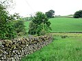 Old drystone wall in good condition - geograph.org.uk - 486292.jpg